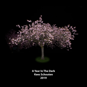 cover boek A Year In The Dark