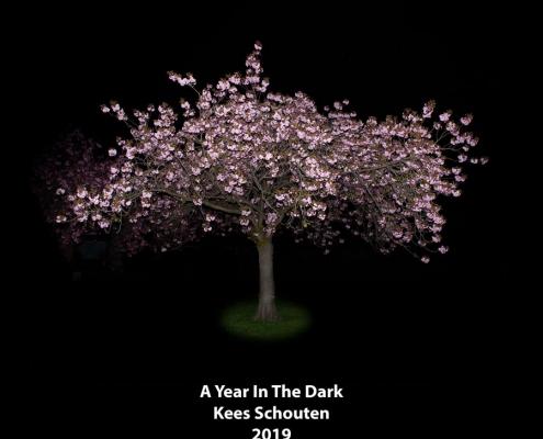 cover boek A Year In The Dark